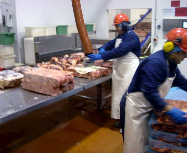 lifting meat with stainless steel vacuum lifter