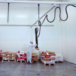 Customizable crane system